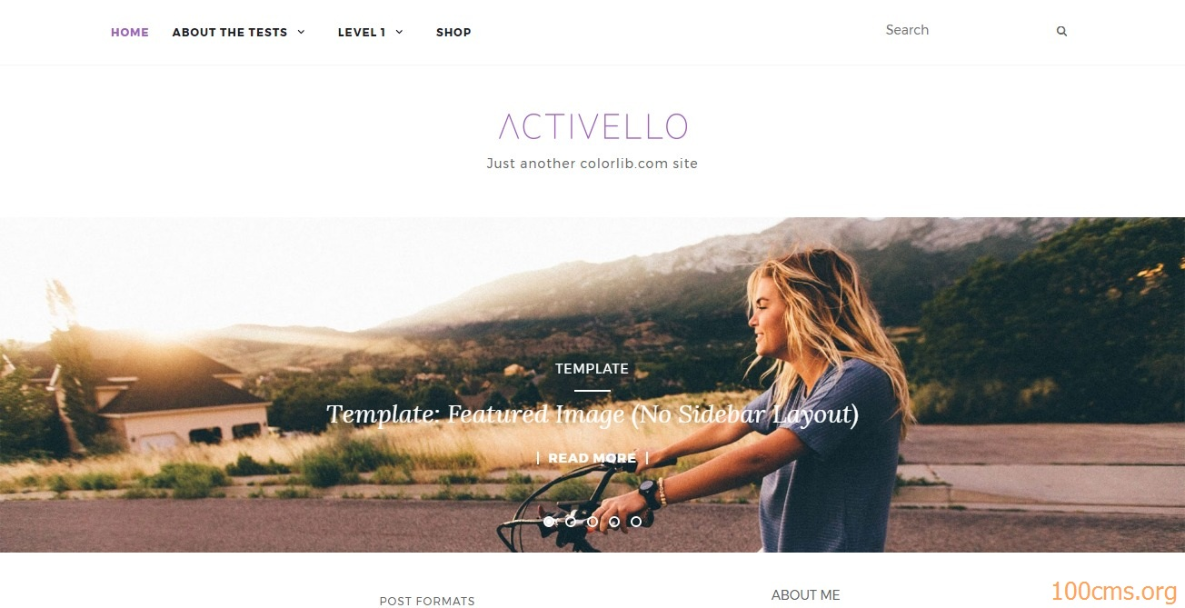 Activello - Wordpress Blog Template