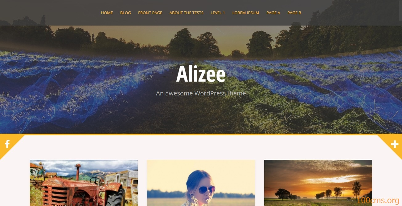 Alizee - Wordpress Blog Template