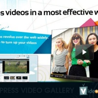 WordPress: Wordpress Video Gallery Plugin