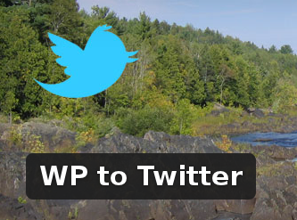 Wordpress Plugin: WP to Twitter
