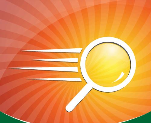 Wordpress Plugin: Sphinx Search Magento Extension