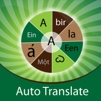 Wordpress extension Auto Translate Magento Extension