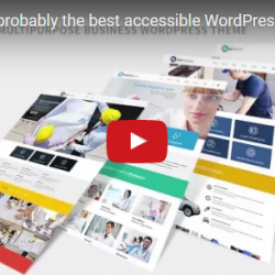 Wordpress news: Must watch the video presentation of our latest multipurpose accessible theme!