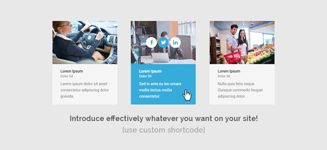 PixelEmu Wordpress News: Introduce effectively whatever you want on your site!