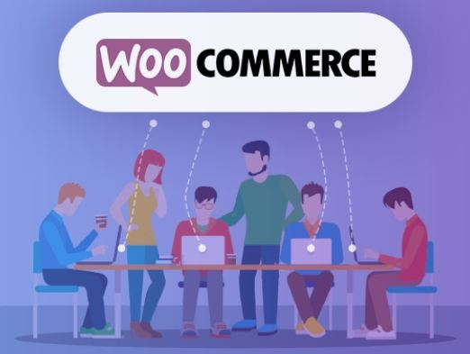 WordPress News: Why Woocommerce is best Solution for Single Owner Websites ?