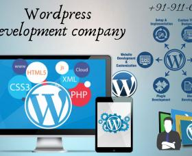 Templates Themes Extensions for Wordpress Joomla CMS | 100cms