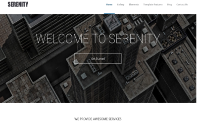 Serenity - universal business theme Drupal