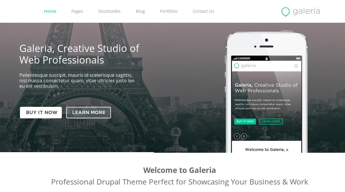 Galeria - professional Drupal 7 portfolio theme