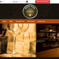 Wordpress Free Theme - Gold Star
