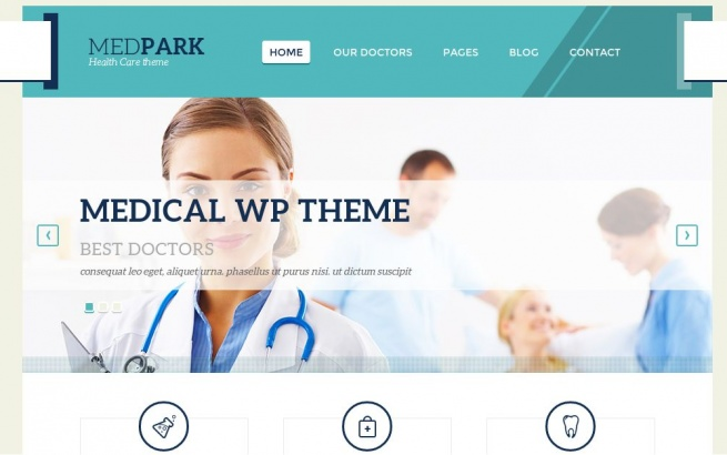 Wordpress Theme: Medpark