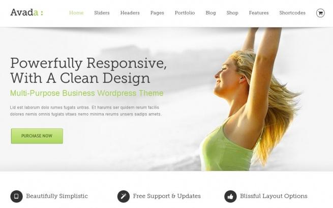 Wordpress Theme: Avada