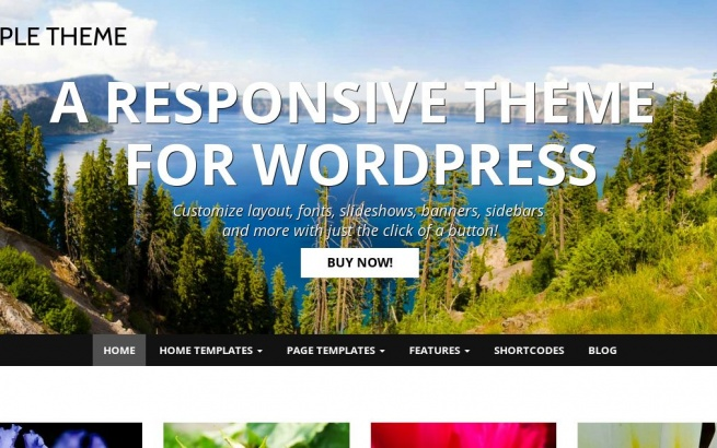 Wordpress Theme: SIMPLE THEME