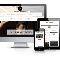 OrdaSoft Wordpress Theme: Artist - Personal Blog Wordpress Theme