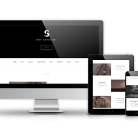 Wordpress Premium Theme - Serenity - Business WordPress theme