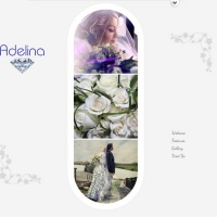 Wordpress Premium Theme - Adelina
