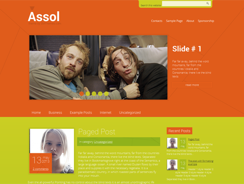 Wordpress Theme: Assol