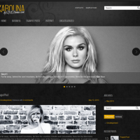 John Smith Wordpress Theme: Karolina
