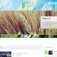 John Smith Wordpress Theme: Wheat