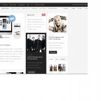 admin1 Joomla Template: Music Joomla Free Template