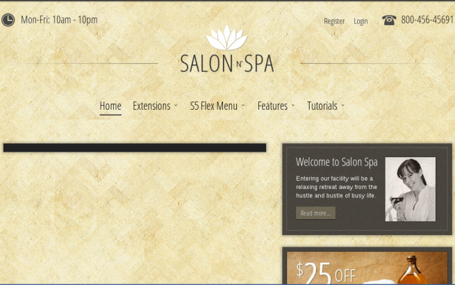 Wordpress Theme: Salon n Spa