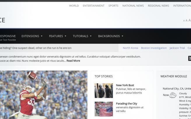 Joomla Template: Newsplace
