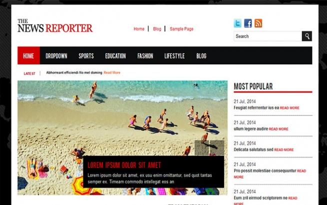 Wordpress Theme: The News Reporter