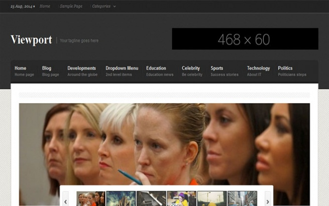 Wordpress Theme: Viewport