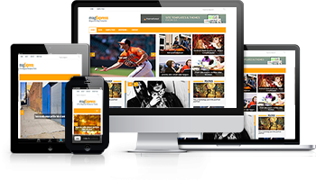 Wordpress Theme: magExpress