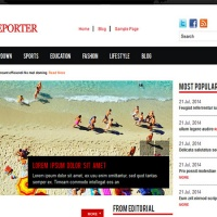 Wordpress Free Theme - The News Reporter