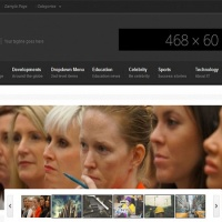 Wordpress Free Theme - Viewport