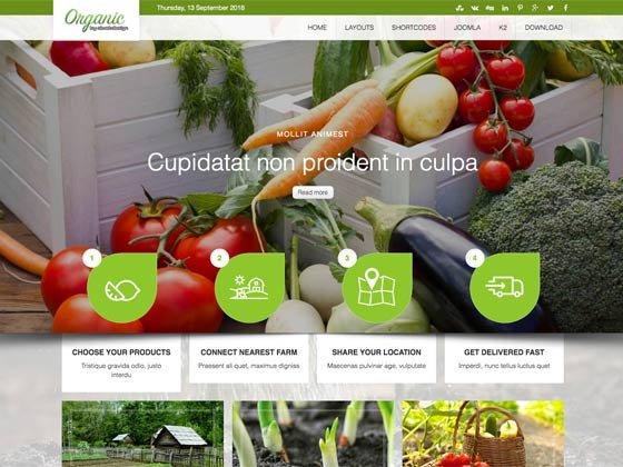 Joomla Template: Ol Organic