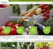 olwebdesign Joomla Template: Ol Organic