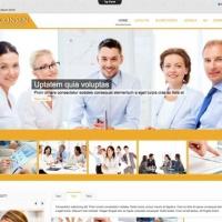 olwebdesign Joomla Template: Ol Consen