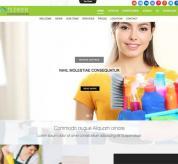 olwebdesign Joomla Template: Ol Cleaser