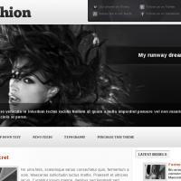 YouJoomla Wordpress Theme: YouFashion