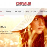 YouJoomla Joomla Template: Convalis