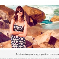 Joomla Free Template - Couture