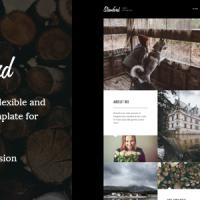 joomlastars Joomla Template: Stamford – #Joomla #Photography #Portfolio & #Blog