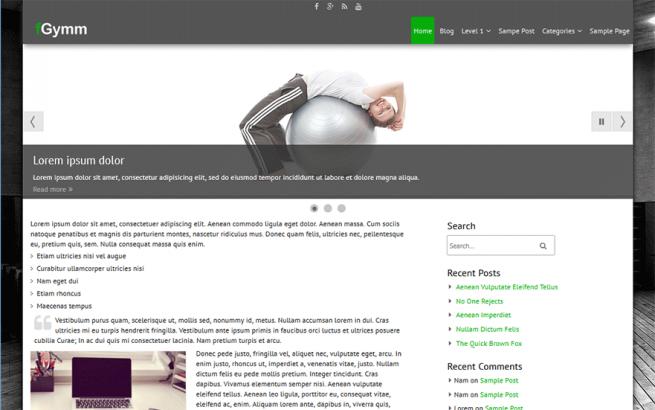 Wordpress Theme: fGymm