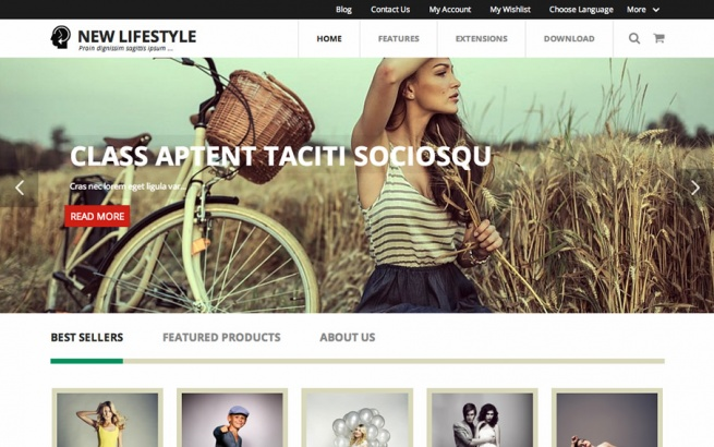 Joomla Template: New Style Joomla template