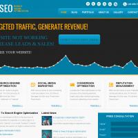 Templatemela Wordpress Theme: SEO Wordpress Template