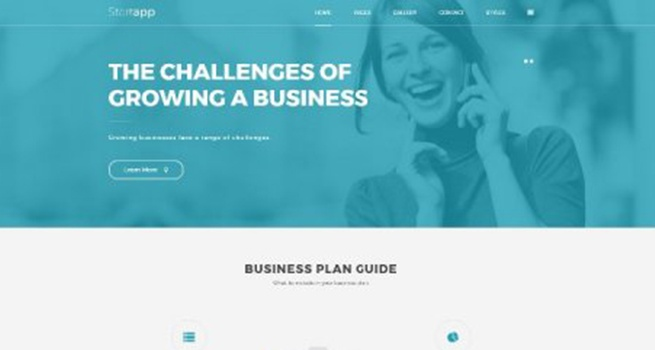 Wordpress Theme: PE Business