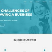 PixelEmu Wordpress Theme: PE Business
