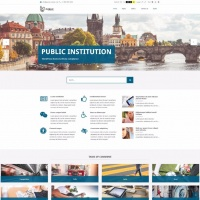 PixelEmu Wordpress Theme: PE Public Institutions
