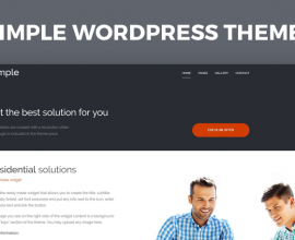Wordpress Free Theme - Simple WCAG and ADA WordPress theme