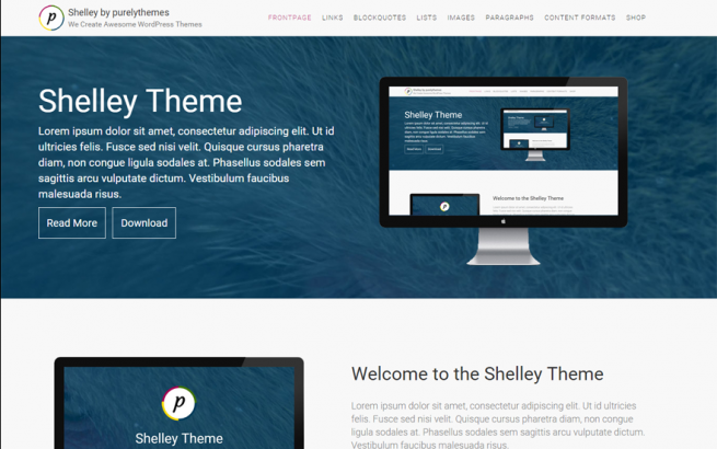 Wordpress Theme: ShelleyPro