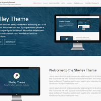 Wordpress Premium Theme - ShelleyPro