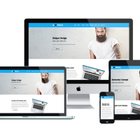 navythemes Wordpress Theme: NT PROFILE – FREE CV / RESUME WORDPRESS THEME