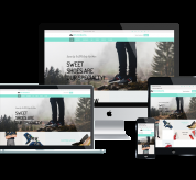 Wordpress Free Theme - WS SOBAFA – Free Responsive Shoes Store Woocommerce Wordpress Theme