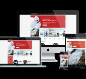 Wordpress Free Theme - WS MEDILAX – FREE RESPONSIVE ONLINE AUDIO STORE WOOCOMMERCE WORDPRESS THEME